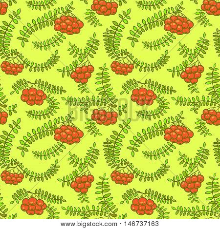 Rowan berry floral botany seamless pattern in line art style. Doodle bright hand-drawn background with branches and leaves