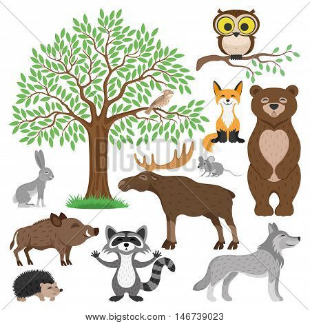 Forest animals. Bird, owl, fox, bear, rabbit, mouse, elk, pig, wolf, hedgehog, raccoon and tree.