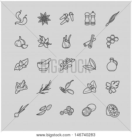 Spices and seasonings line icons for your design