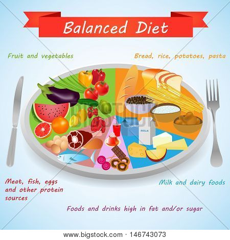 Food pyramid. Food on a plate for a healthy and balanced diet. Healthy foods infographics elements