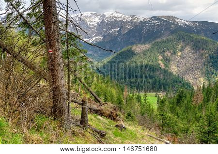 Spring mountain landscape. Beauriful mountain trail in Western Tatra Poland.