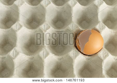 egg shell cranked on paper egg container