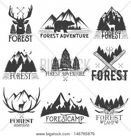 Vector set of forest theme emblems. Vintage badges, logos, labels and stickers with animal and trees silhouettes, isolated illustrations on white background