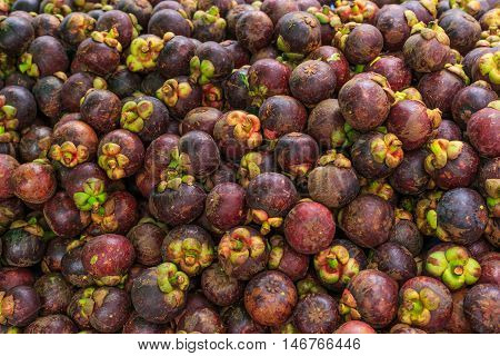 fresh mangosteen with full vitamin and benefit
