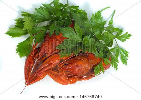 macro two Boiled crayfishs on isolate white background with green