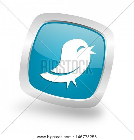 twitter square glossy chrome silver metallic web icon