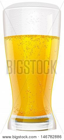 Lager beer in glass. Isolated on white vector illustration