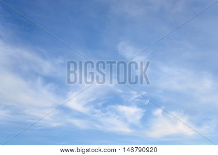 Blue sky and clouds may be used as background.