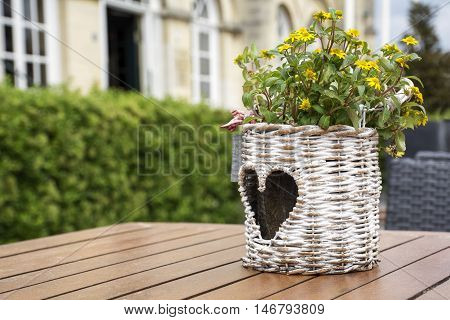 Wicker flowerpot with heart-shape pattern with yellow flowers is standing on the table in the street restaurant