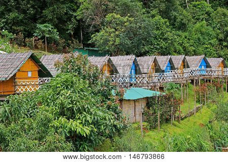Colorful Thai styled wooden hut with thatched roof surrounded by forest in Mon Jam, Chiang Mai, Thailand