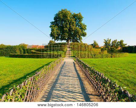 Park walkway leads to lush green deciduous tree on a Strawberry hill in Kromeriz Flower Garden, Czech Republic
