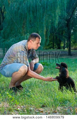 man takes over the paw of a black poodle on nature in summer
