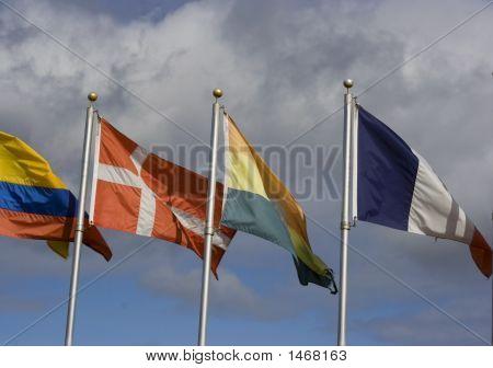 International Cooperation 2