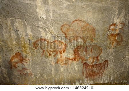 the real rock paintings of ancient man Kapova cave