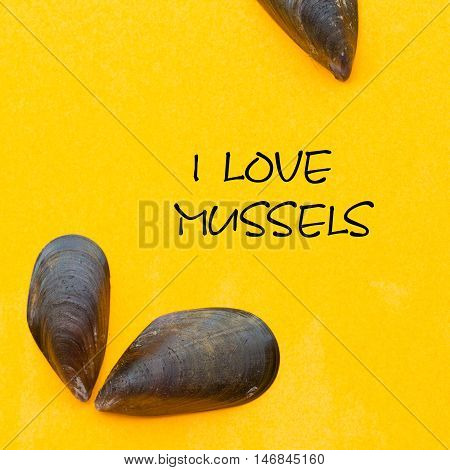 yellow square with mussels and the phrase I love mussels