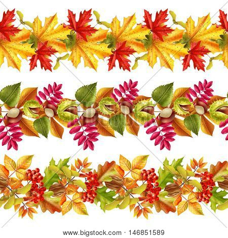 Seamless borders with bright autumn leaves chestnuts and rowan on white background flat vector illustration