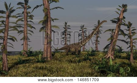 3d Illustration of the walking mamenchisaurus