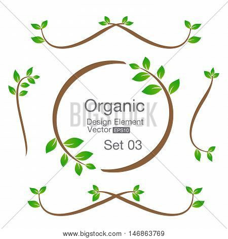 Organic design element isolated on the background vector illustration eps10