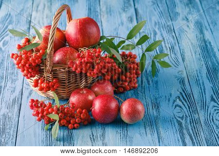 Autumnal Still Life With Apples And Rowan-berry