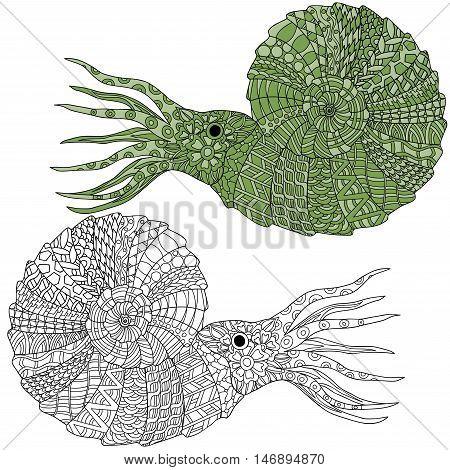 Hand drawn ammonite shellfish vector illustration. Anti stress coloring page zentangle art ethnic doodle pattern.