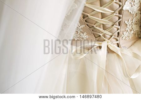 Closeup corset wedding bridesmaid dresses , rear view