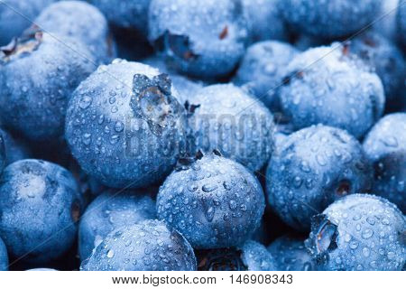 Close Up Shot Of Bunch Of Organic Blueberries