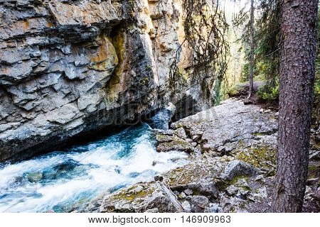 Johnston Creek, Banff National Park, Alberta
