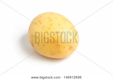 Raw Potato Root Isolated in white background