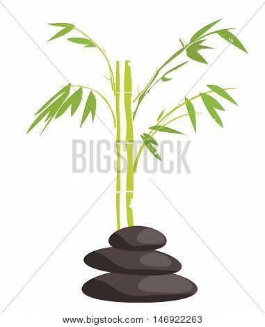 vector illustration of spa items relaxing background