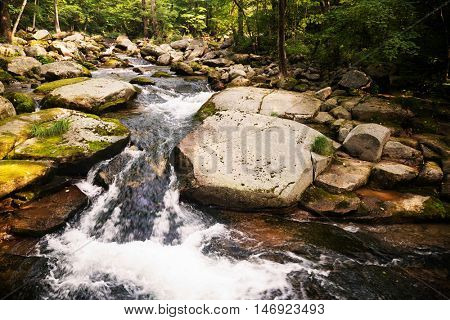 River summer landscape in a remote mountainous region of Siberia. Russian Far East.