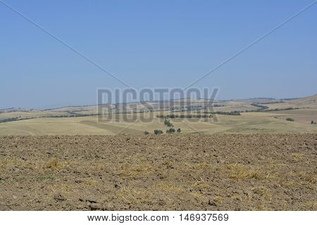 cultivated fields on the horizon, a landscape with fields, the open fields