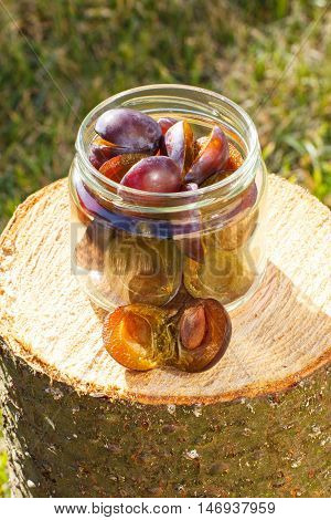 Plums In Glass Jar On Wooden Stump In Garden On Sunny Day
