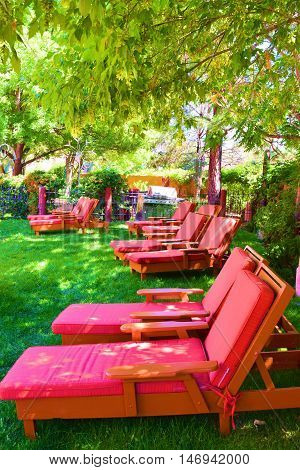 Contemporary style lounge chairs placed on a green lawn at a garden surrounded by plants and trees