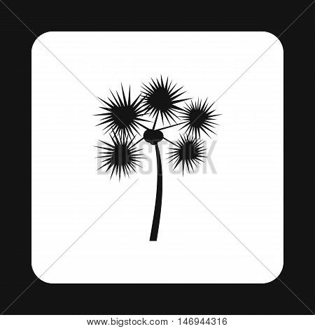 Phoenix - Date Palm icon in simple style isolated on white background vector illustration