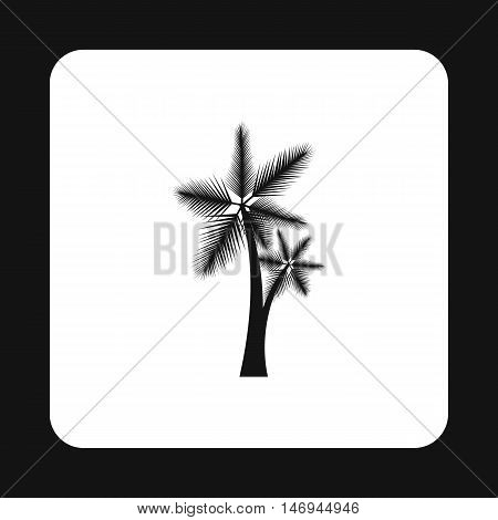 Tall palm trees icon in simple style isolated on white background vector illustration