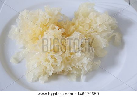 Closed up Raw snow fungus on white plate