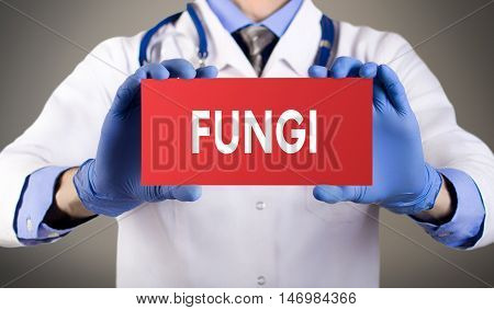 Doctor's hands in blue gloves shows the word fungi. Medical concept.