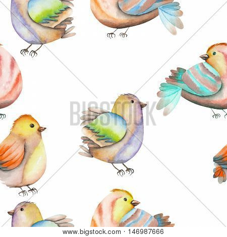 Seamless pattern of the watercolor birds, hand drawn on a white background