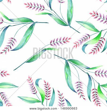 A seamless pattern with an floral ornament of the watercolor spikelets, hand-drawn on a white background
