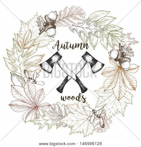 Vector hand drawn wreath of autumn leaves and two crossed axes. Vintage engraved fall wood illustration. Oak maple chestnut raven accorn. Colored lumberjack print.