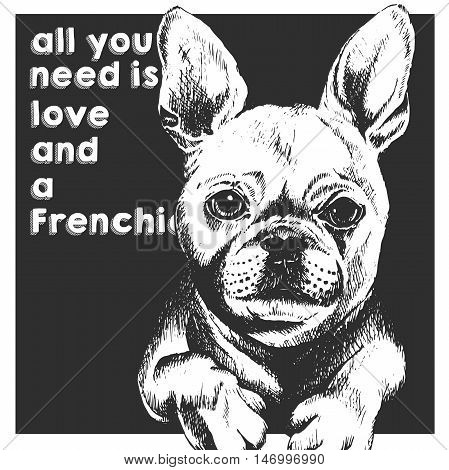 Vector close up portrait of french bulldog isolated on black square background. All you need is love and a dog. Hand drawn domestic dog illustration. Sketched engraved funny illustration.