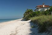 picture of beach-house  - casey key beach - JPG