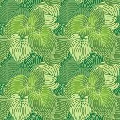 Hosta Leaf Pattern in Green