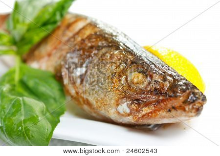 Grilled Juicy Pikeperch With Lemon And Basil