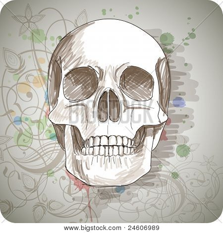 Skull sketch & floral calligraphy ornament - a stylized orchid, color paint background. Bitmap copy my vector ID 71735830