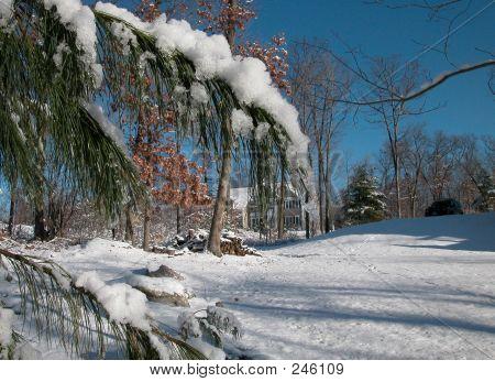 Snow Storm0001