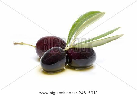 Three Fresh Olives Bathed In Olive Oil