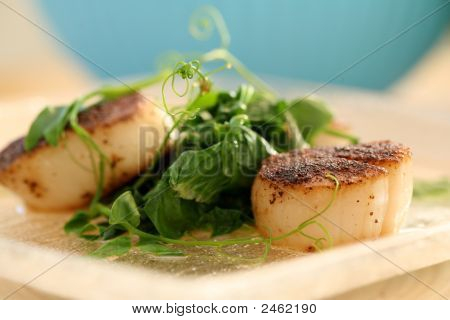 Seared Scallop With Pea Shoots