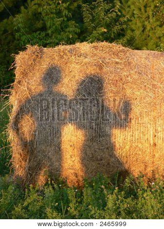 Shadow Fun On The Hay Bail