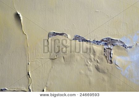 Damp Wall with peeling paint